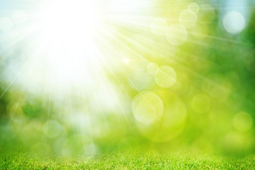5 reasons landscapers should outsource billing
