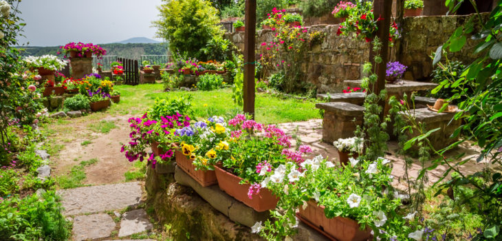 The Mediterranean Garden: Is Useful Landscaping the Wave of the Future