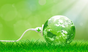 Lawn Care Company Sustainable Upgrades