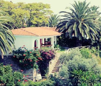 Mediterranean Flair: Practical Landscaping