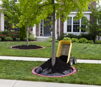 How Your Landscaping Company Can Get More Done With Fewer Staff